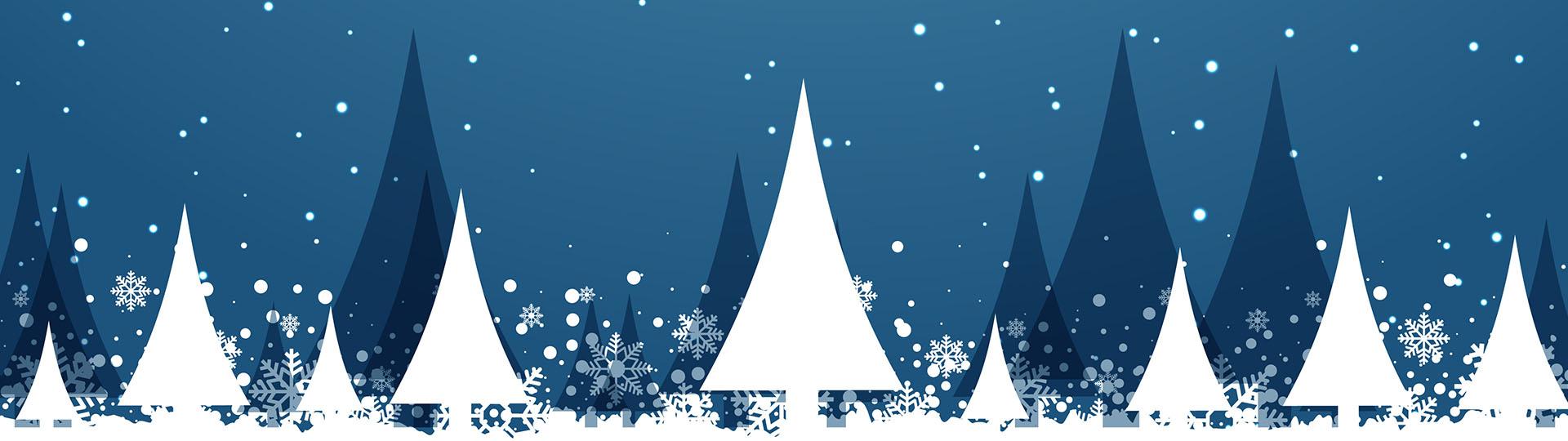 Srećnu Novu Godinu i Božićne praznike želi Vam TSIS